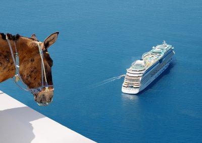 Kreuzfahrt Esel Maultier Griechenland